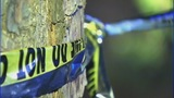 Photos from the scene of the Rowan County plane crash - (3/7)