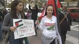 Gaza supporters rally Sunday in Uptown - (4/10)