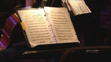IMAGES: The Charlotte Civic Orchestra -… - (5/9)