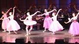 IMAGES: The Charlotte Civic Orchestra -… - (7/9)