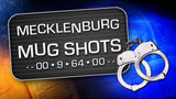Mecklenburg Mug Shots: Feb. 17-24 - (22/25)
