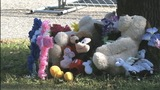 IMAGES: Children memorialized outside Burke Co. home - (5/6)