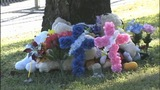 IMAGES: Children memorialized outside Burke Co. home - (2/6)