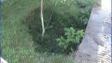 IMAGES: Lenoir sinkholes - (8/9)