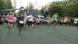 IMAGES: Race for the Cure 2013 - (4/6)