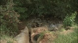 IMAGES: Action 9: Erosion problems for… - (8/8)