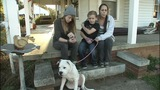 IMAGES: Officer gives dog to family who lost… - (4/14)