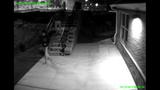 IMAGES: Police seek 2 after vandalism - (1/4)