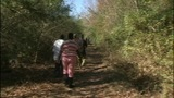 IMAGES: Scene of body found in woods SC woods - (8/10)
