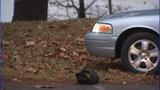IMAGES: Scene of man shot after CVS robber in Denver - (3/10)