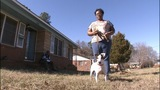 IMAGES: Stolen dog returned to owners 5 years later - (6/10)