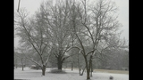 IMAGES: Snow falling in Charlotte Tuesday - (4/25)