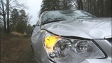 IMAGES: Tree hits car while man driving - (3/9)
