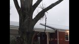 VIEWER IMAGES: Winter weather hits Charlotte area - (22/24)