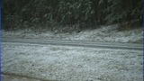 IMAGES: Snow falls in Catawba County Friday morning - (8/16)