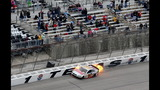 IMAGES: Duck Commander 500 - (17/18)