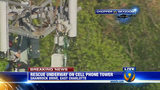 IMAGES: Rescue of worker on cellphone tower - (4/25)