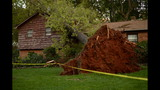 IMAGES: Storm damage in surrounding areas - (13/22)