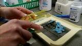 9 Investigates_ Drug rings pushing prescription drugs in your neighborhood _5218815