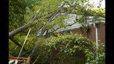IMAGES: Family displaced after tree crashes… - (9/14)