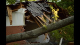 IMAGES: Family displaced after tree crashes… - (13/14)