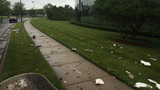 IMAGES: Thursday storm damage - (25/25)