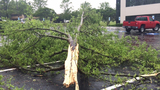 IMAGES: Thursday storm damage - (21/25)