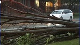GALLERY: Thursday night storms cause problems… - (7/10)