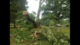 IMAGES: Storm damage in Lincoln County on June 18 - (4/14)