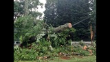 IMAGES: Storm damage in Lincoln County on June 18 - (8/14)