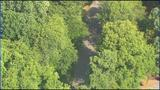 IMAGES: Scene of body found in wooded area in… - (4/23)