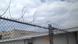 IMAGES: Man escapes handcuffs, climbs fence… - (10/19)