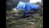 PHOTOS: Tree falls on Kannapolis home - (2/4)