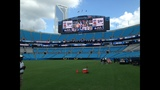 IMAGES: Panthers Fan Fest at Bank of America Stadium - (20/25)