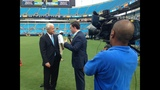 IMAGES: Panthers Fan Fest at Bank of America Stadium - (19/25)