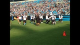 IMAGES: Panthers Fan Fest at Bank of America Stadium - (7/25)