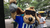 IMAGES: Local mascots come out to support… - (15/25)