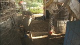 IMAGES: 200 roosters, chickens seized in… - (1/10)