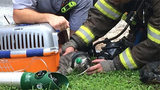 IMAGES: 2 cats saved from east Charlotte house fire - (10/25)