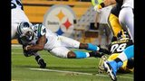 IMAGES: Panthers vs. Steelers - (2/25)