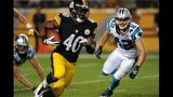 IMAGES: Panthers vs. Steelers - (15/25)