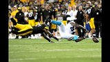 IMAGES: Panthers vs. Steelers - (12/25)