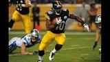 IMAGES: Panthers vs. Steelers - (25/25)