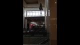 SouthPark Mall Christmas tree_8369382