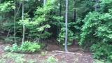 RAW VIDEO: Secluded area where woman was found dead