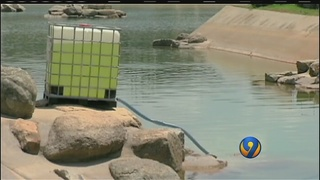 Treatment of brain-eating amoeba on hold at Whitewater Center