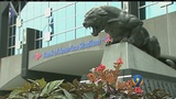 Panthers vs. Vikings declared extraordinary event by CMPD