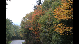 FALL FOLIAGE: Vibrant colors on display in the North Carolina mountains