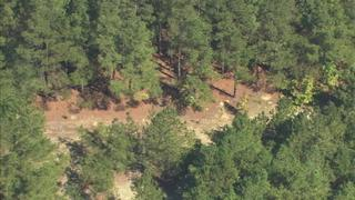 IMAGES: Wooded area where Erica Parsons
