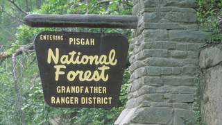 Prescribed burn planned in Pisgah National Forest in Caldwell County